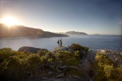 Wilsons Promontory walks and wildlife tour