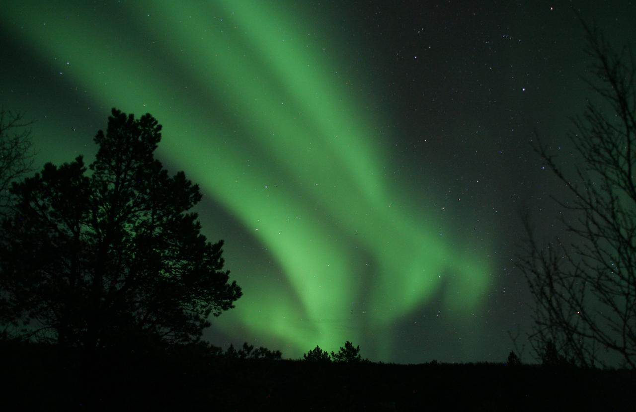 Northern Lights chase in a small group