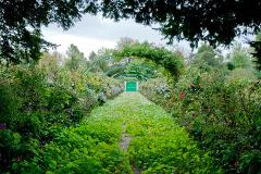 Giverny + Versailles 9.5H Private Tour Sedan Car 1 to 3 pax