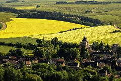 3-Day Tour (Giverny, Versailles, Loire Valley, Chablis)