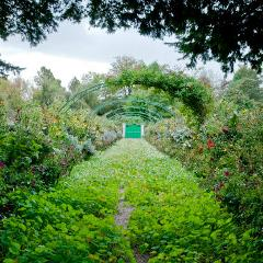 CLAUDE MONET'S GIVERNY 5H Private Tour Sedan 1 to 3 Pax (Morning)