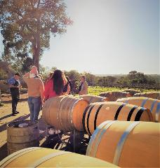 The All About Margaret River Tour: Wine, Coffee, Lunch and Forest