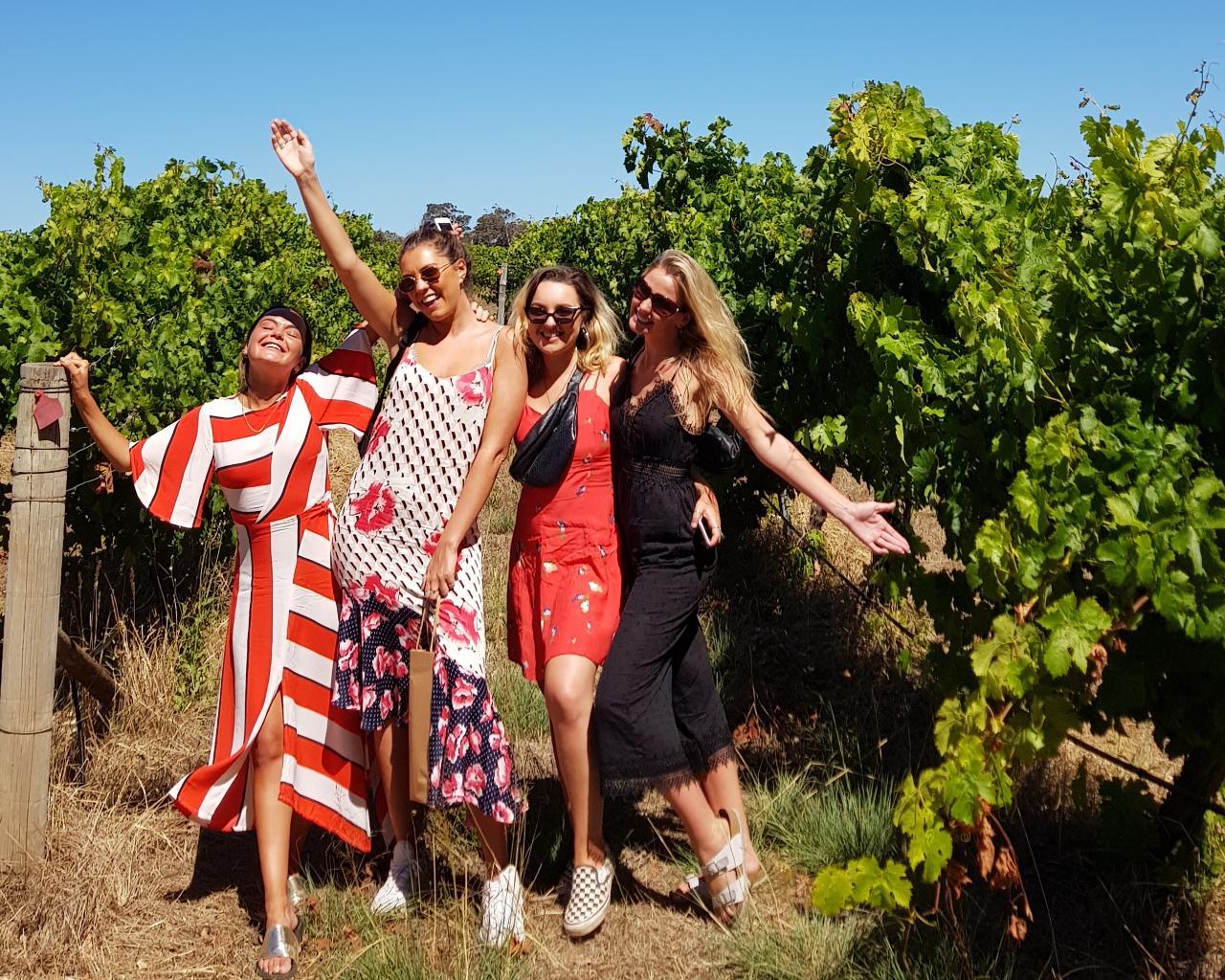 Highlights Morning Tour: Boutique Wineries & Unique Experiences