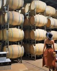 Full Day Wine & All About It Tour: Scones, Chocolate, Wineries, Lunch & More!