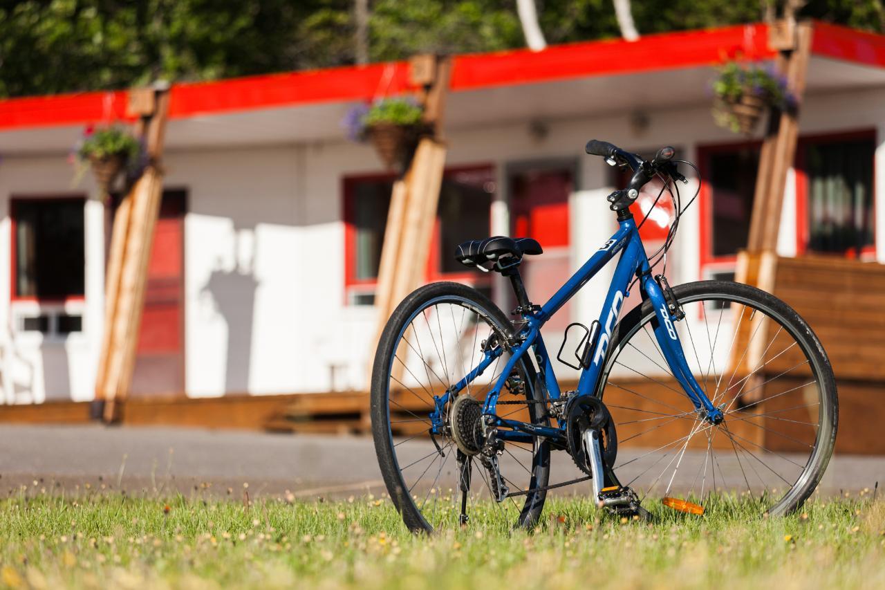 Louez un vélo et explorez l'Île d'Orléans // Rent a Bike and explore Ile d'Orleans