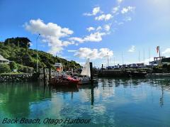 Ferry-Portobello to Back Beach-3:15pm departure
