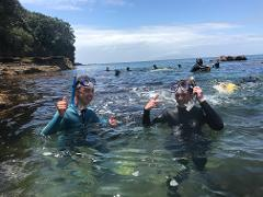 Guided Snorkel Experience Beginners