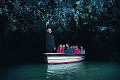 Waitomo Glowworm Caves Small Group Tour from Auckland