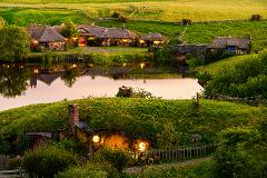 Auckland to Rotorua via Hobbiton Tour one way (small groups)