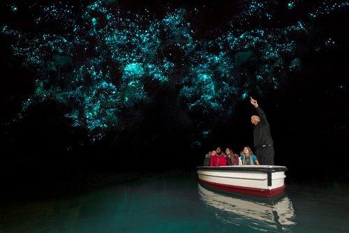 Hobbiton, Waitomo Caves, Rotorua & Taupo 2 day tour in small groups. (return or one way  )