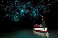 Waitomo Glowworm Caves Tour from Auckland (small groups)