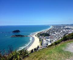Auckland to Tauranga Transfer