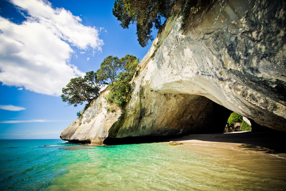 Coromandel Wanderer Tour from Auckland (Small Groups)