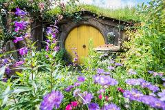Hobbiton & Rotorua Small Group Tour including Te Puia from Auckland (Return Trip)