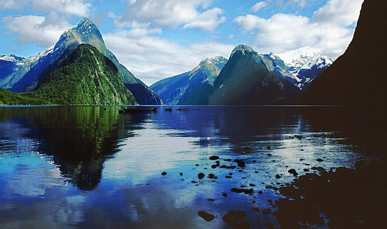 Milford Sound Small Group Tour & Cruise from Queenstown or Te Anau (Return Trip)