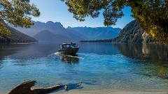 Milford Track Transport & Tour Package