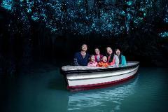 Waitomo Glowworm Caves & Hobbiton Movie Set small group tour from Auckland