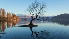 Experience Wanaka Tour from Queenstown (Small groups)
