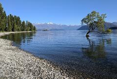 Experience Wanaka Small Group Tour from Queenstown (Return Trip)