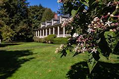 Walk & Talk Tour: Botanical Tour