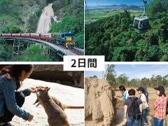 キュランダ観光デラックスコース+大自然動物探検ツアー(2日間)
