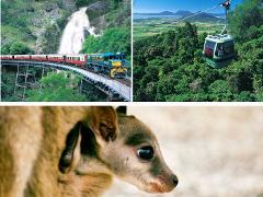 キュランダ列車+スカイレール+大自然動物探検ツアー(星空観測+オージーBBQ)