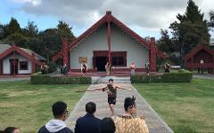 6hr Rotorua Geothermal Wonderland Tour