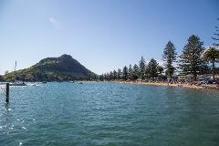 4hr Tauranga Scenic History and Tasting Tour FREE Kiwifruit Ice Cream
