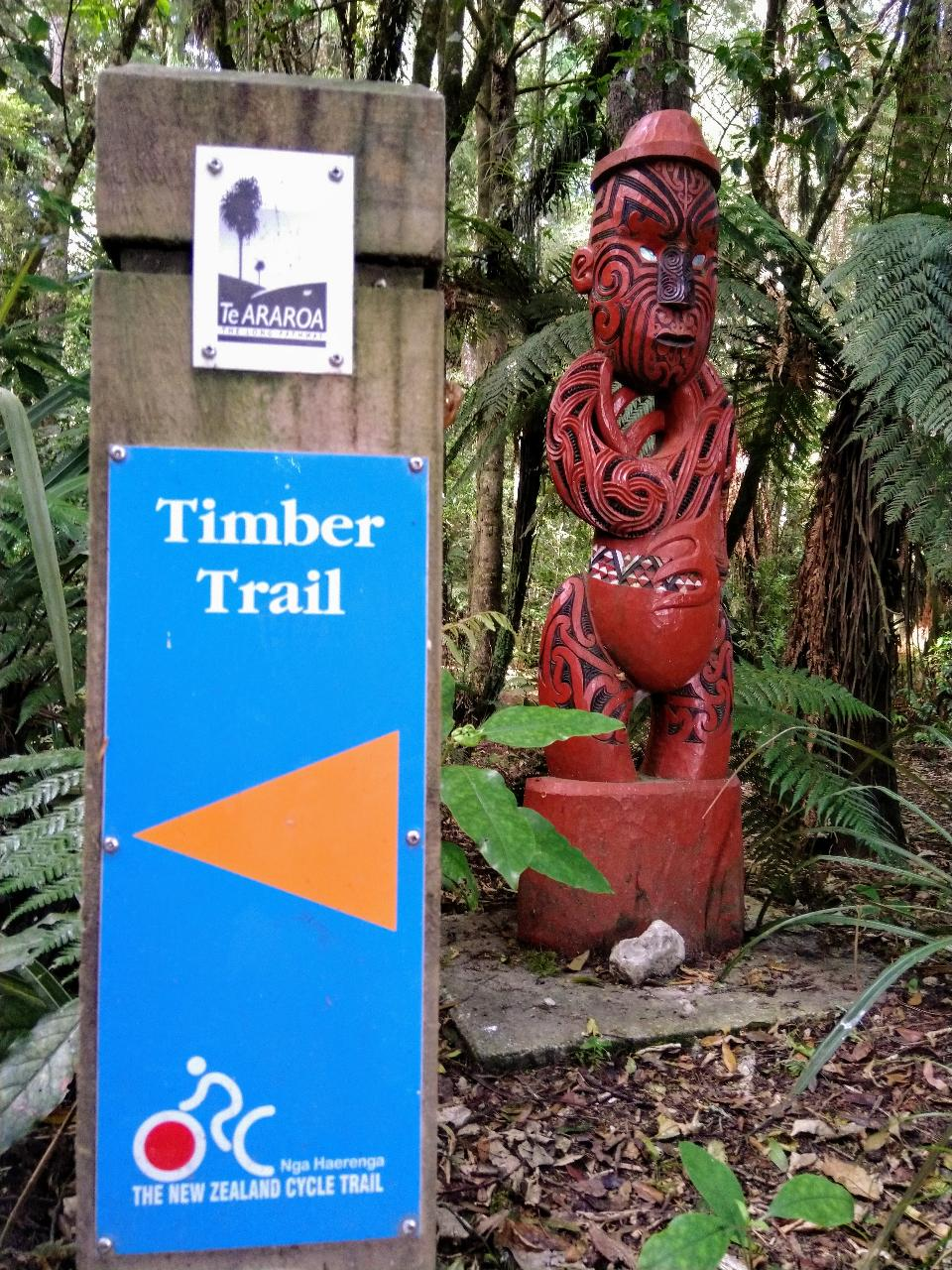 2 day Timber trail Lodge ex Taupo return Package