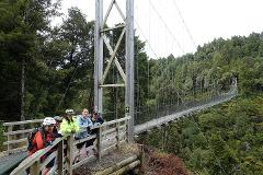 Full Timber trail in 1 day (Ex Taupo)