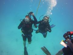 Open Water Check Out  Dives