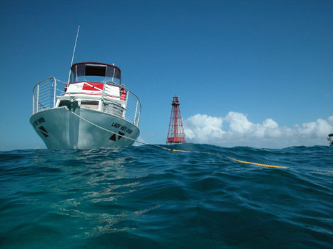 6 Trip-  Dive Package Including Air or Nitrox fills for your Cylinders