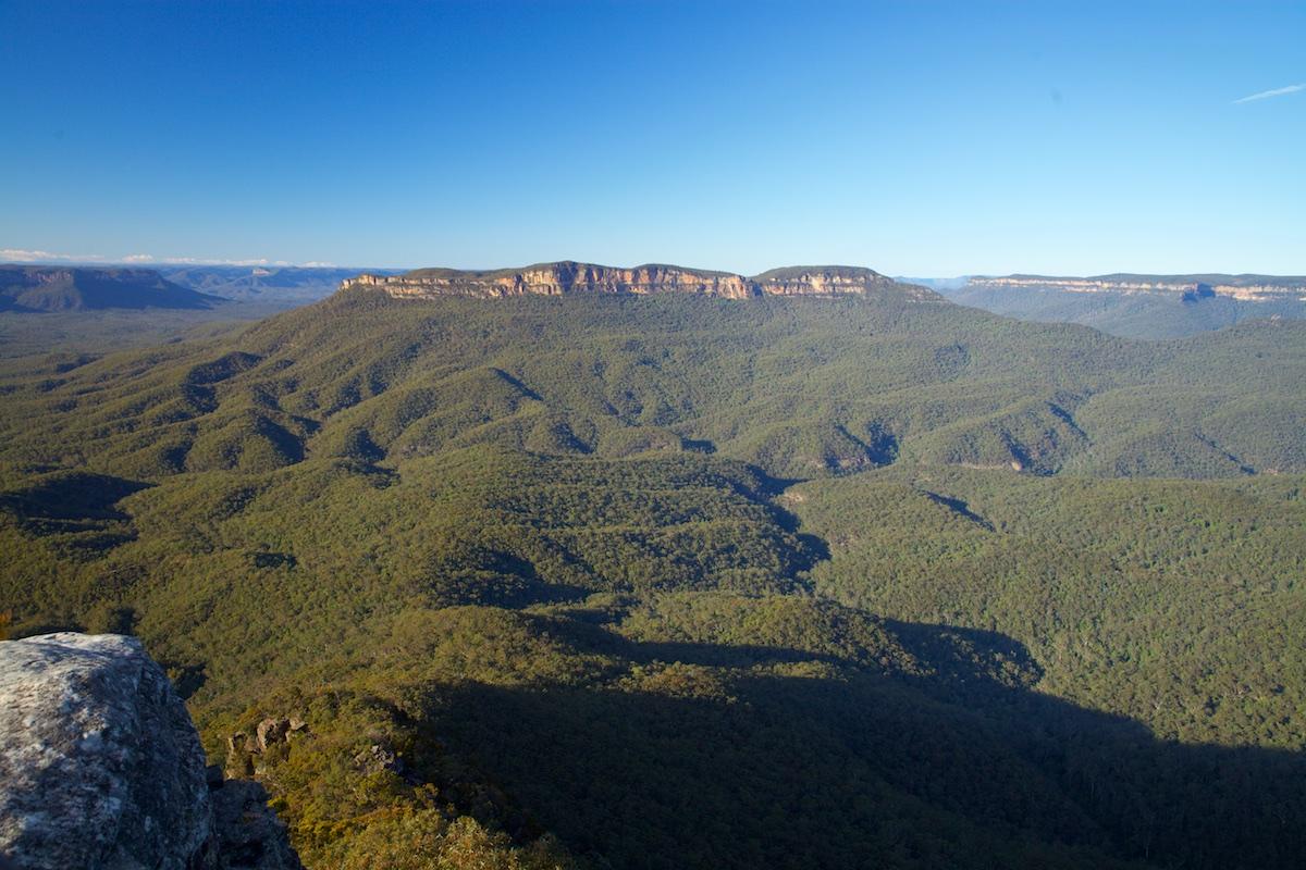 Blue Mountains Wildlife Spotting & Photography Tour