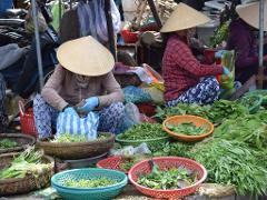 Discover Vietnam Tour