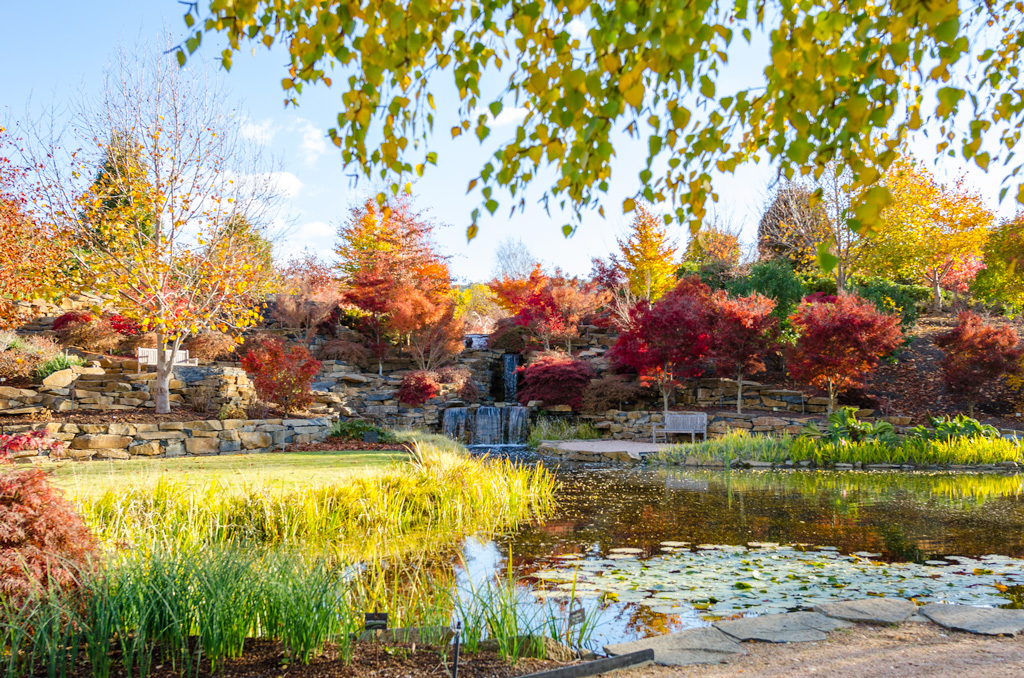 Mayfield Autumn Festival - Access to the Hawkins' Family Garden & Mayfield Garden