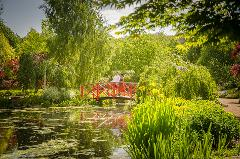 Annual Memberships to Mayfield Garden - Includes Garden Entry