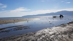 On water tour Kapiti Marine Reserve and Kapiti Island combo