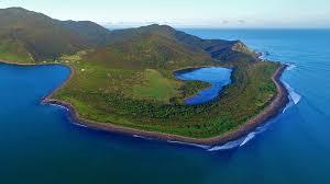 North End Kapiti Island - HALF DAY -