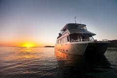 Sunset Cruise Only & Last Min Bookings