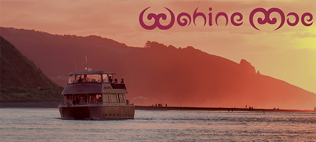 Gift Card - Sunset Cruise + Fish & Chips