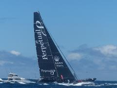 Boxing Day - Sydney to Hobart race experience