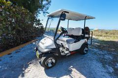 Golf Cart- 4 Passenger