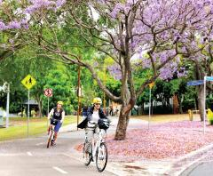 Weekly Standard e Bike Hire