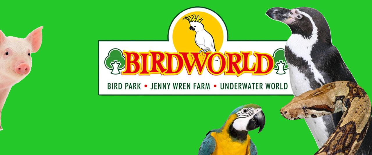 Birdworld with Free Cream Tea OR Forest Lodge Garden Centre only - Tue 21st Aug 2018
