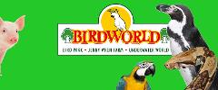 Birdworld with Free Cream Tea OR Forest Lodge Garden Centre only - Thu 1st Aug 2019
