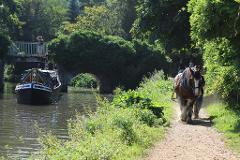 Godalming Horse Drawn Canal Boat with Cream Tea - Wed 9th May 2018