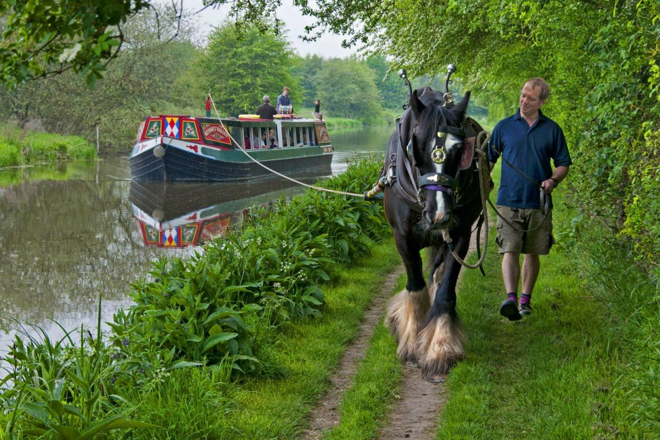 Horse Drawn Canal Boat & Marlborough - Tue 11th June 2019