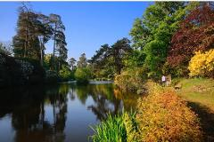 Leonardslee Gardens, West Sussex  - Tue 21st May 2019