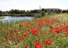 National Memorial Arboretum - Sun 7th October 2018