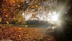 Autumn Colours of Kew Gardens - Tue 12th Oct 2021